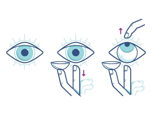 עקבו אחר הטכניקה להחזקת העיניים פתוחות בעת ההרכבה.